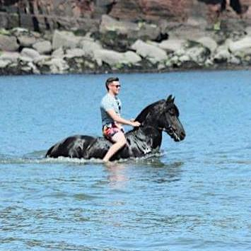 Sean Condren leads a horse to water.